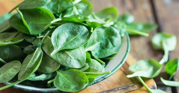 estres y alimentacion hojas verdes